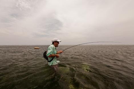Golden_Trevally_Fly_fishing_mahe-06