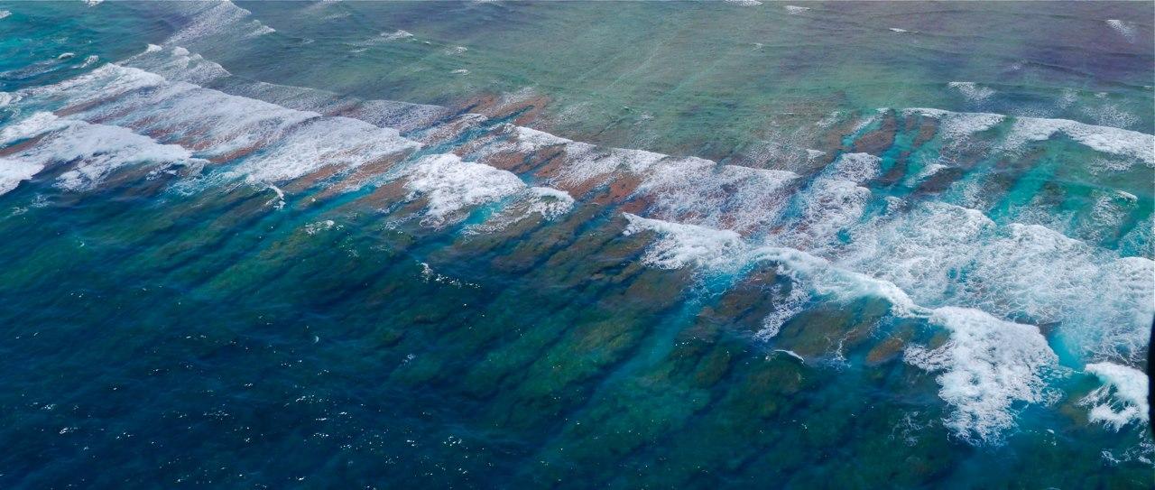 Fly_fishing_farquhar_Surf Line