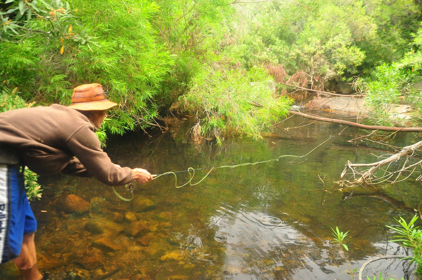 Flyfishing_cape_streams-6