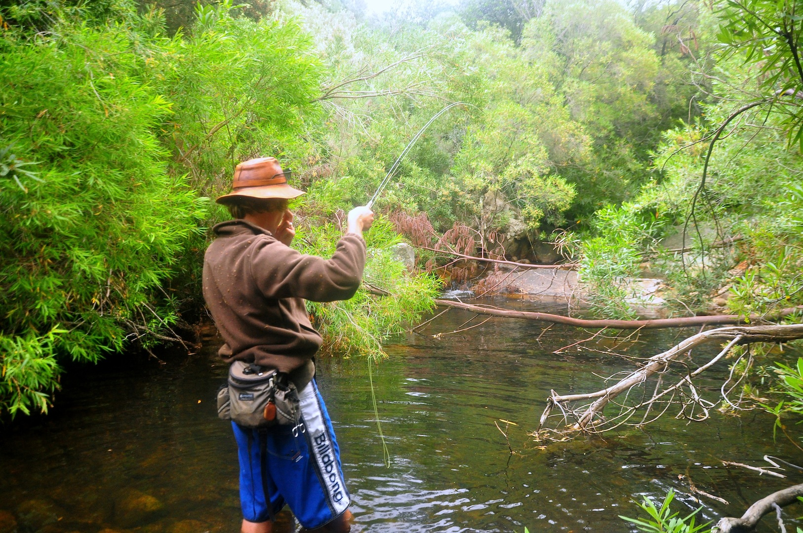 Flyfishing_cape_streams-8