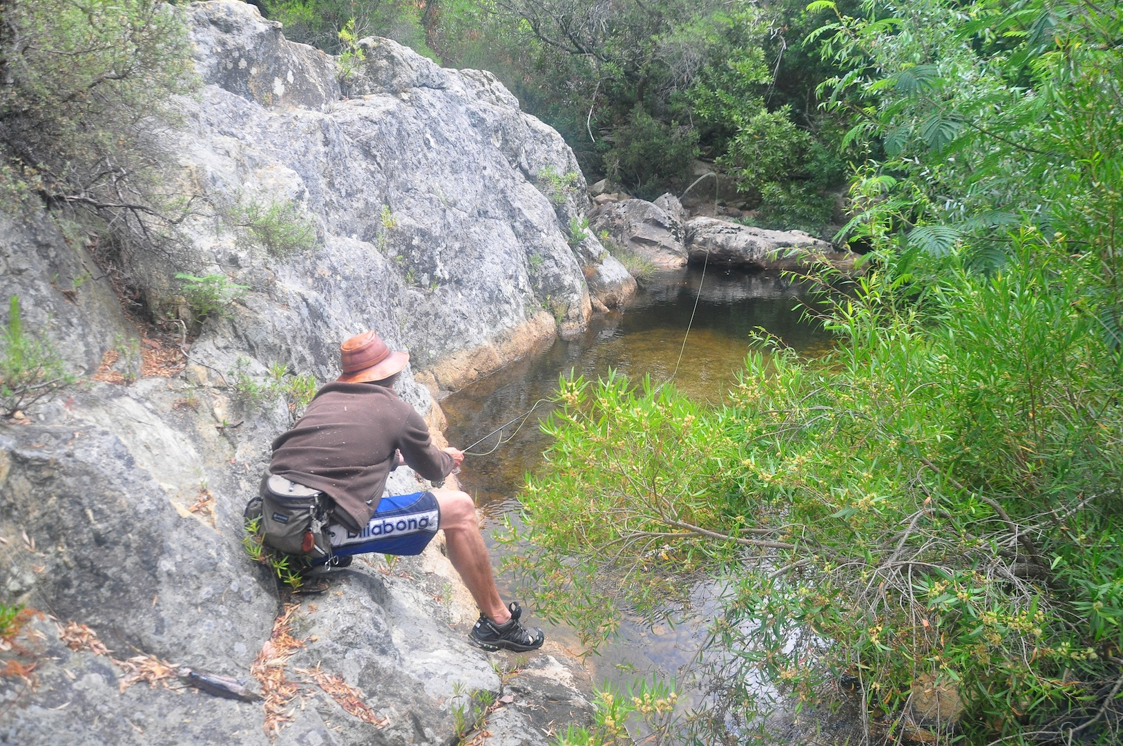 Flyfishing_cape_streams-11