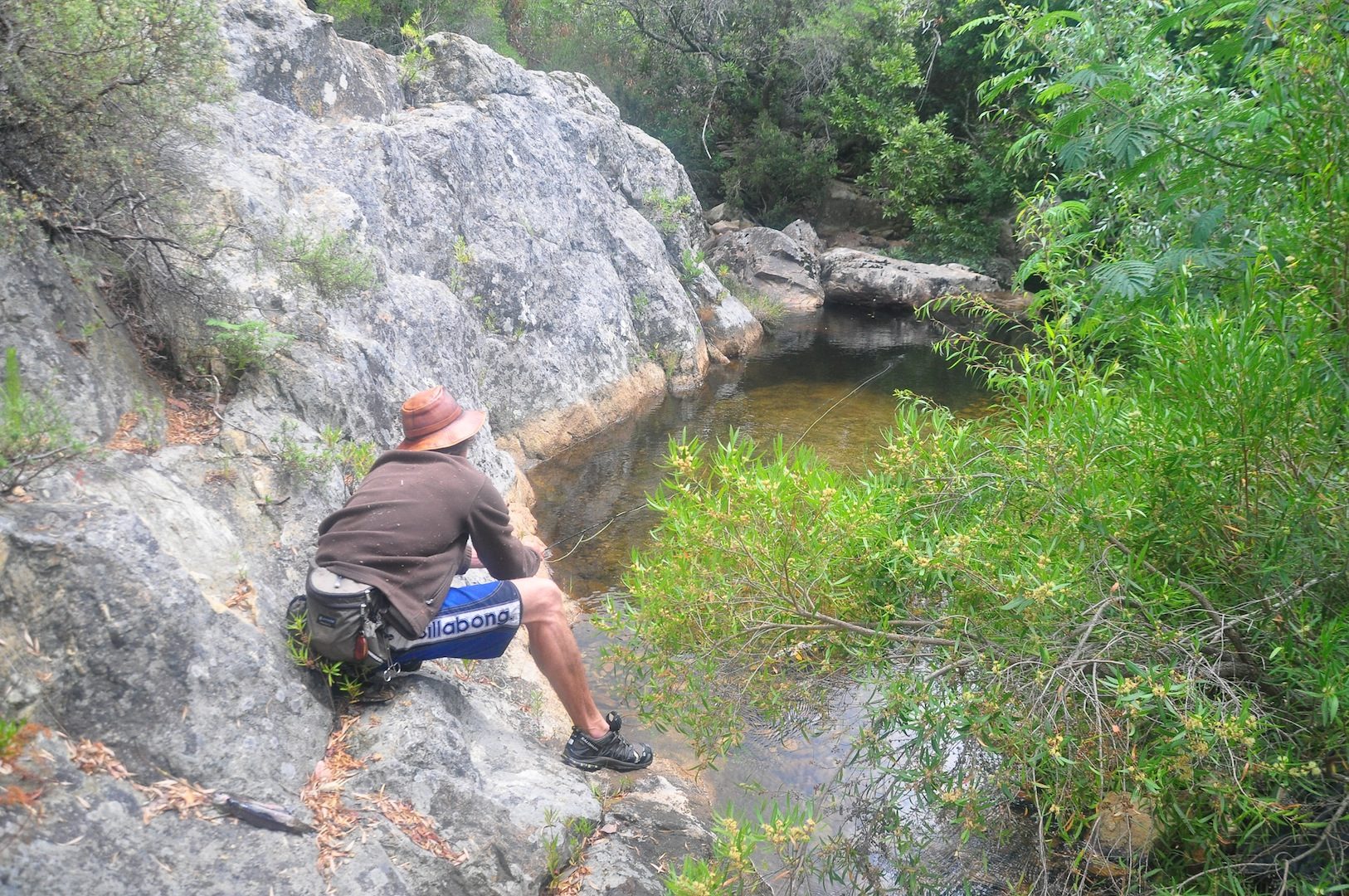 Flyfishing_cape_streams-12