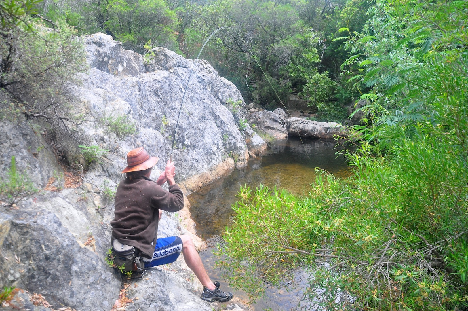 Flyfishing_cape_streams-13