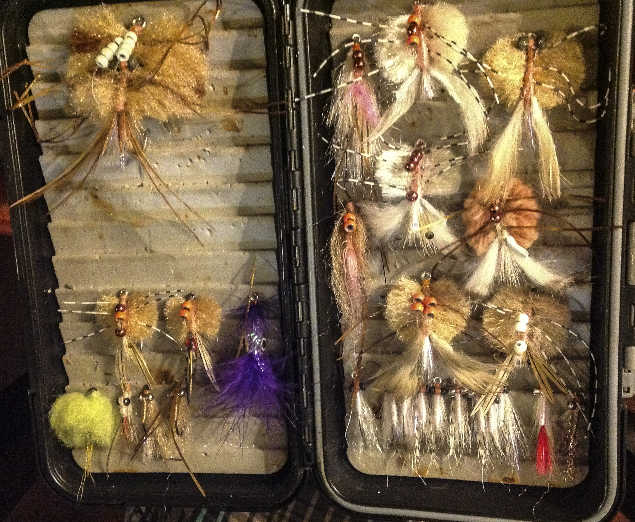 My current flats box. Minimal Charlies and lots of crabs - there were even more in the big box at base.