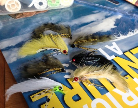 fly tying for trout in the western cape and south africa