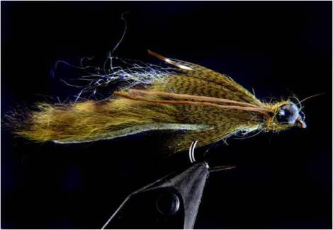 The original: Herman Botes' Papa Roach Dragon Fly Nymph