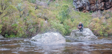 fly fishing for trout in the western cape