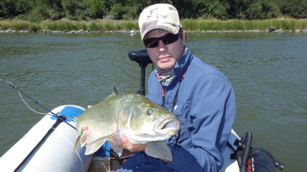 whats_in_the_bag_largemouth_yellowfish - 001