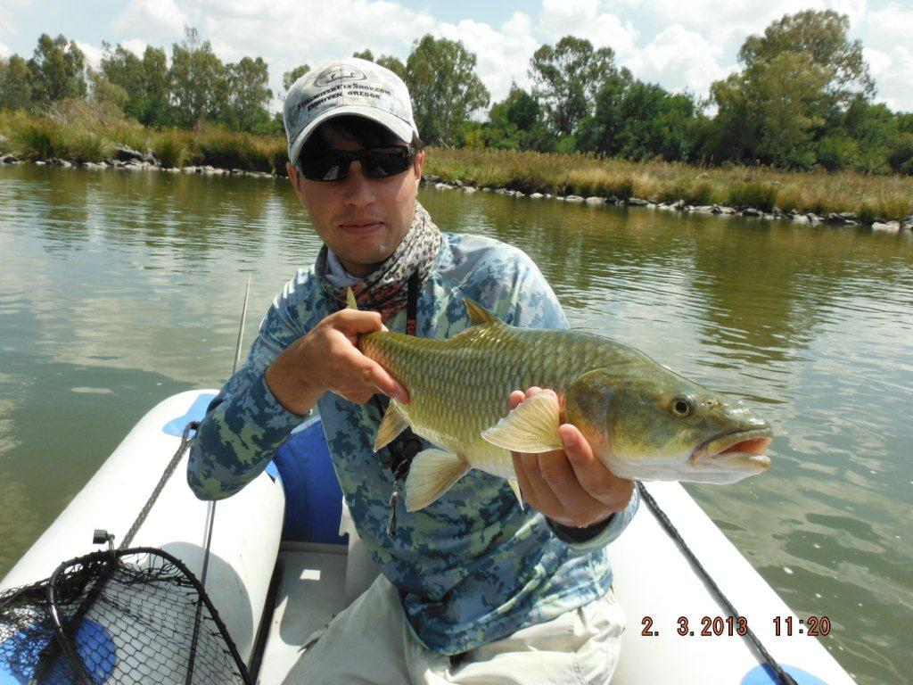 whats_in_the_bag_largemouth_yellowfish - 002