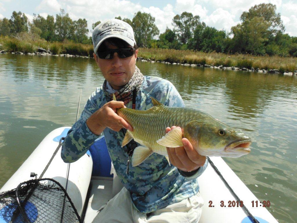 whats_in_the_bag_largemouth_yellowfish - 002