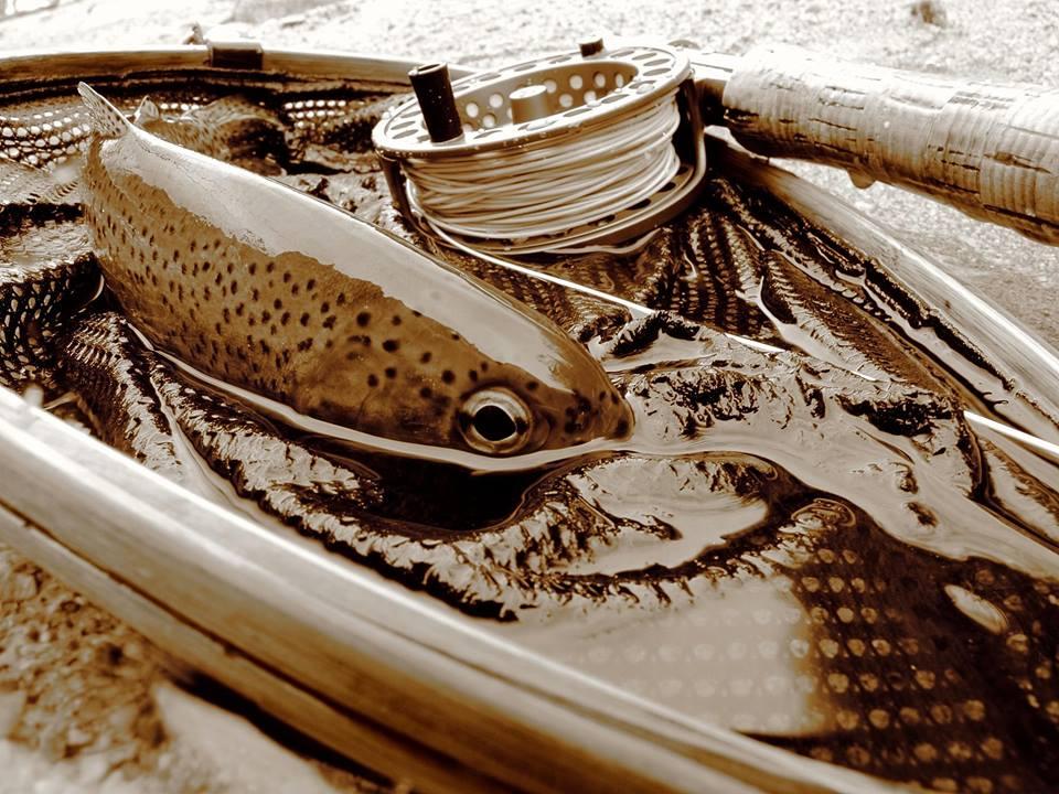 fly_fish_photos_photography_darryl_lampert-013