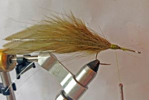 bucktail shoulder