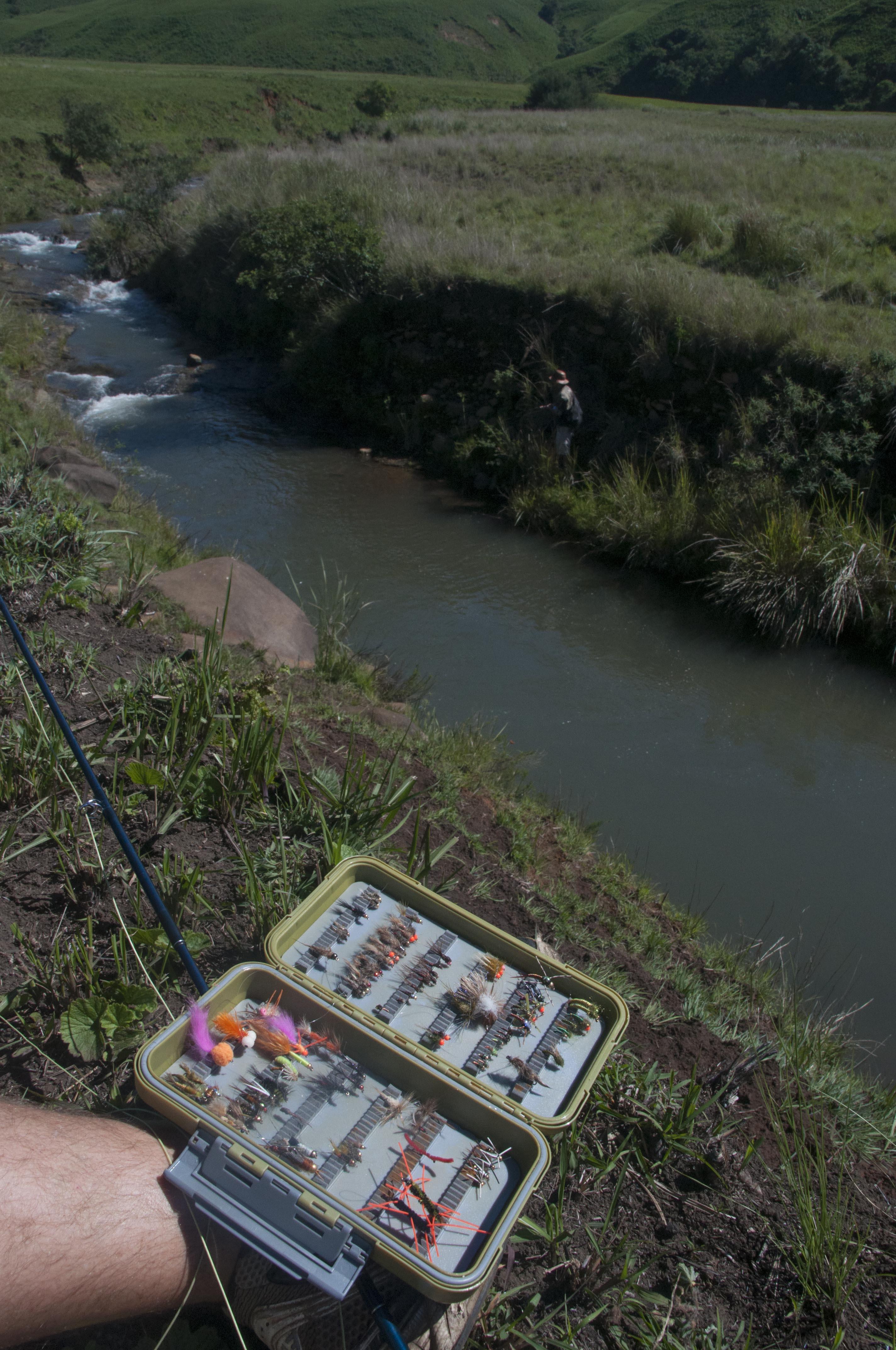 transkei_fly_fishing_trout-001