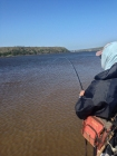 breede_fly_fishing_grunter-011