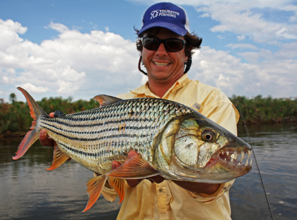 A guide to tigerfishing feathers fluoro for Tiger fish pictures
