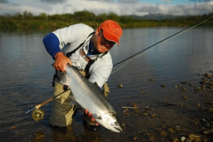 Dillingham is well known for its annual, large salmon runs
