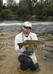 Fat smallie from a Breede rapid