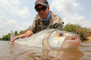 Keith Clover of Tourette Fishing with a trophy tigerfish ready for release