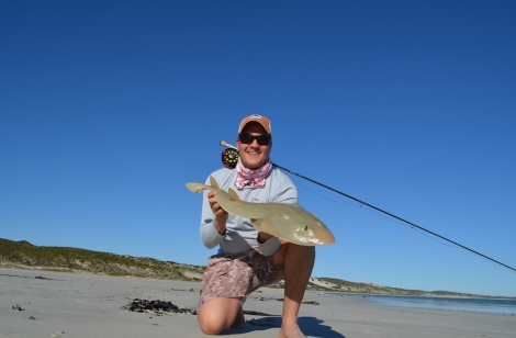 sand sharks on fly